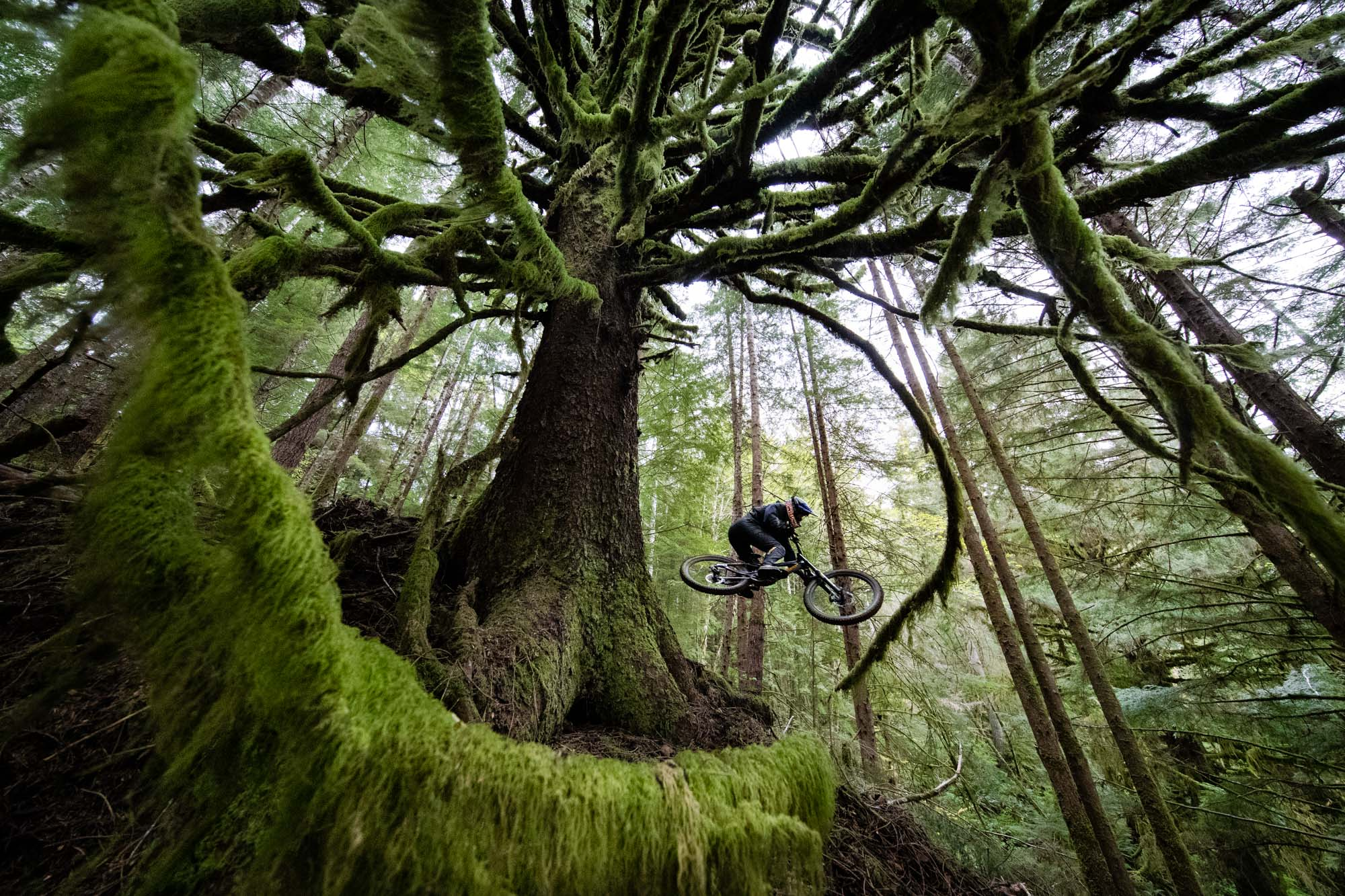 mountain-bike-photographer-oregon