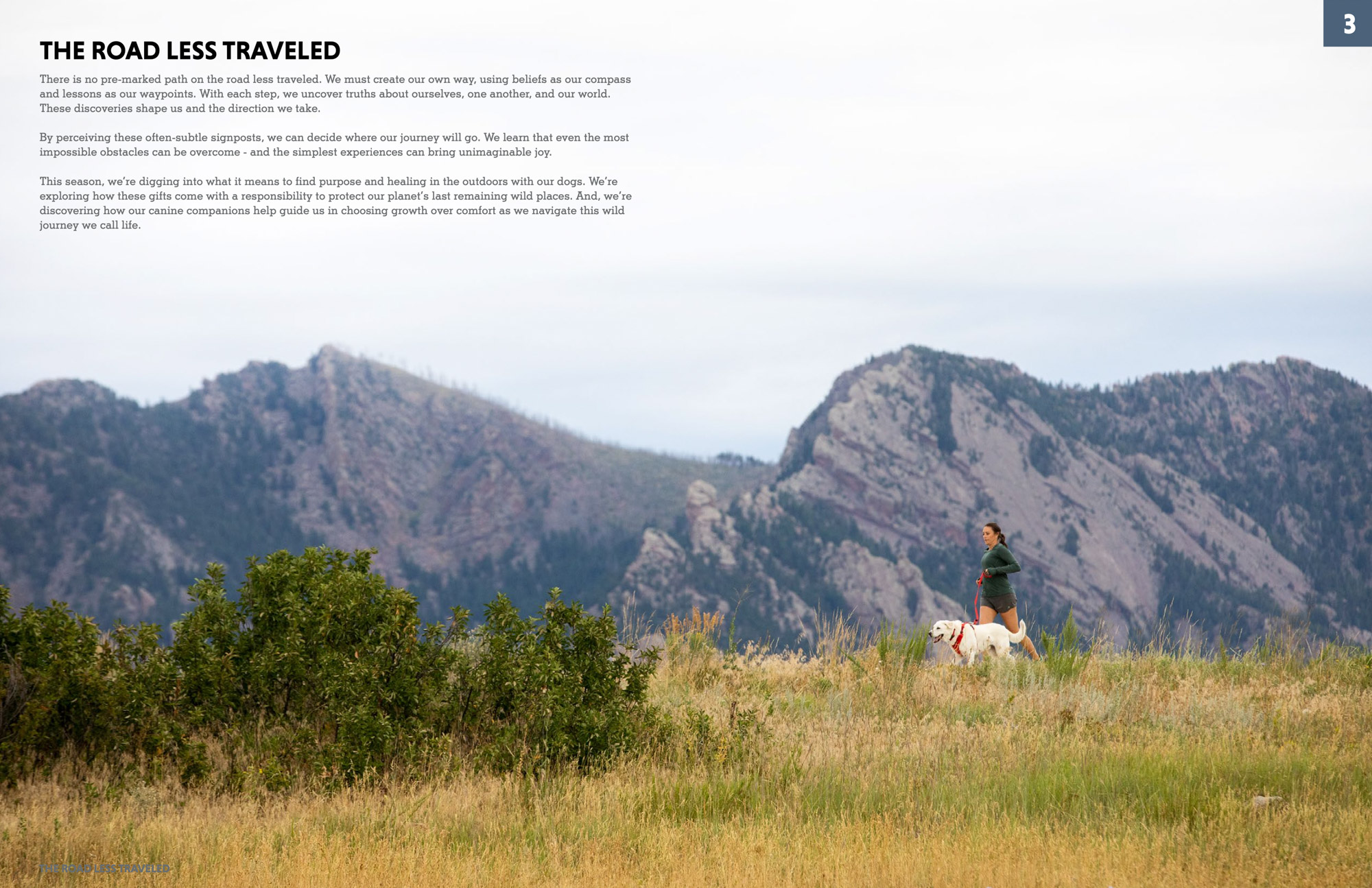 trail-run-women-female-mountains-colorado-dog-photography